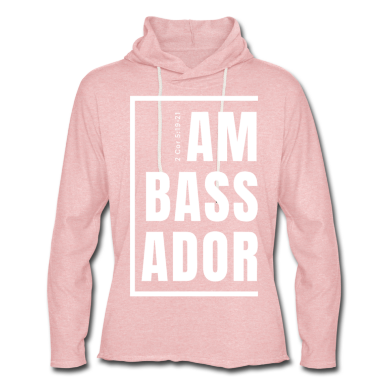 Ambassador Unisex Rough Hoodie W on Pink 1 - WearGoodWords